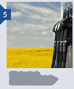 Biofuels Environmental
